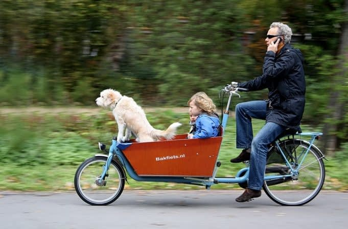 Barn, hund, lådcykel, fart, Bakfuets.nl