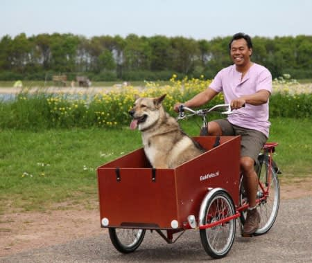 lådcykel glada åka en hund Bakfiets.nl