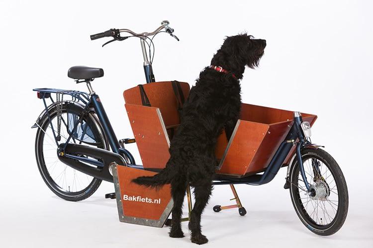 Bakfiets nl Cruiser Lång Hund